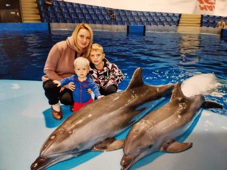Подарок от дельфинов